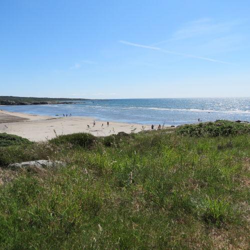 Ugglarps Strand