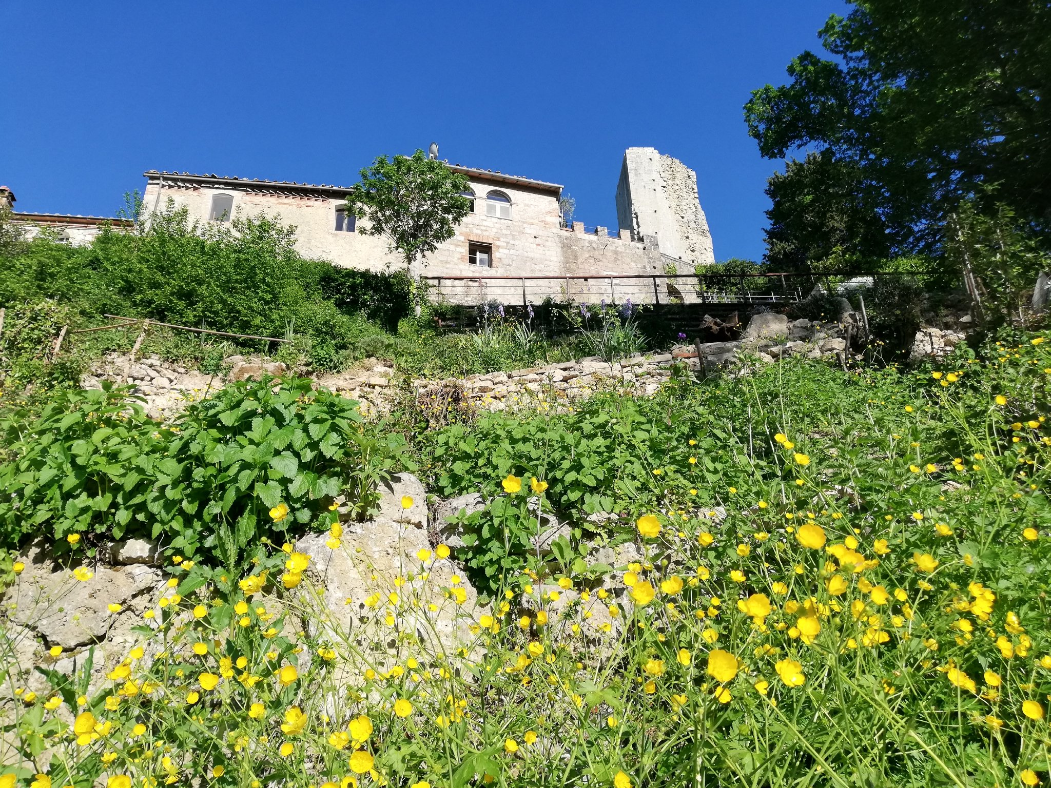 Detailbild von Ferienwohnung Sant'Ansano Gerardo