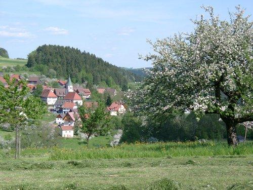 Wittendorf im Frühling