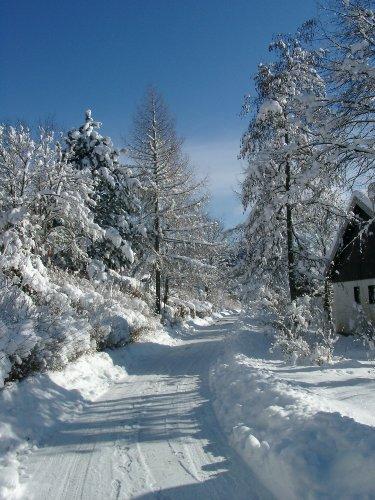 Anfahrtsweg im Winter