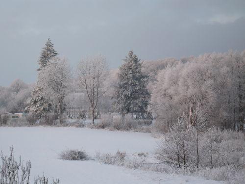 Winter am Großen Plöner See
