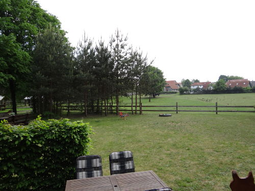 Zusatzbild Nr. 09 von Ferienhaus Finnhütte Wittenbecker Tannen