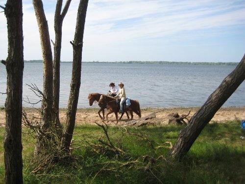 Strandausflüge mit und ohne Pferd