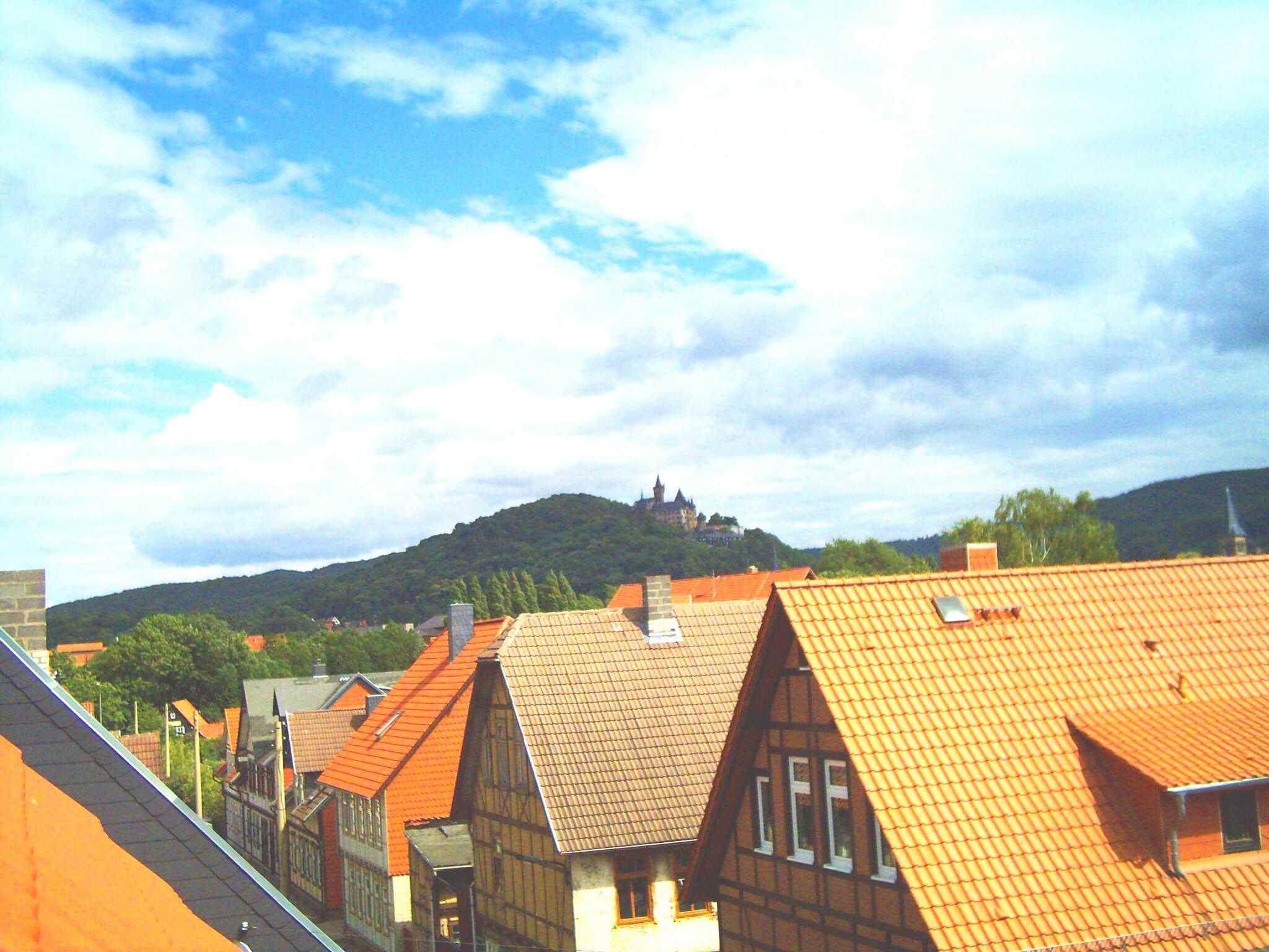 Bilck zum Schloss