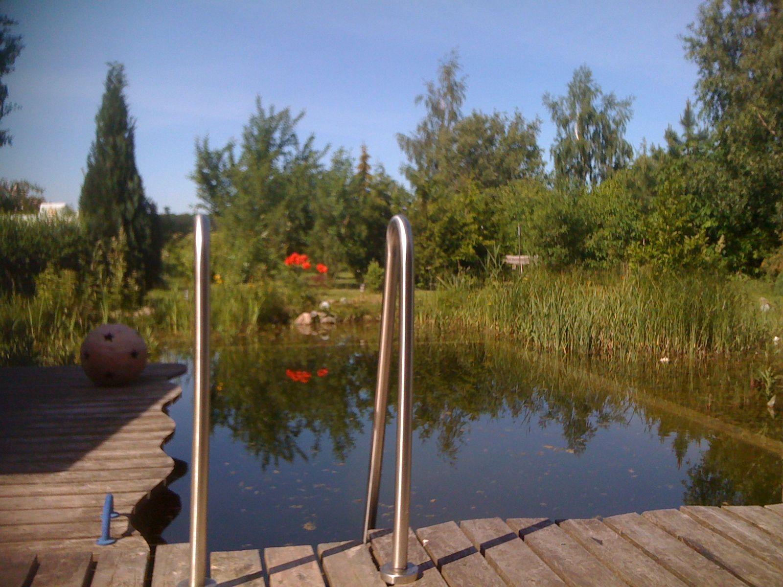 Der Schwimmteich