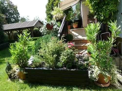Blick in den Garten und zum Carport