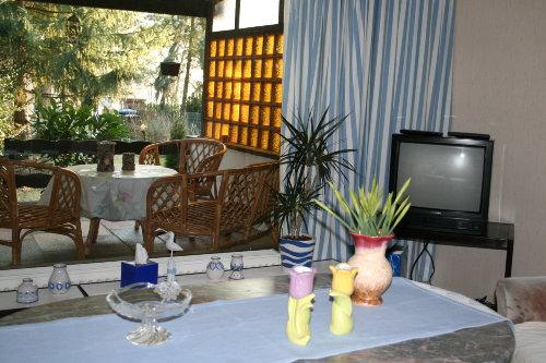 Wohnzimmer und Terrasse