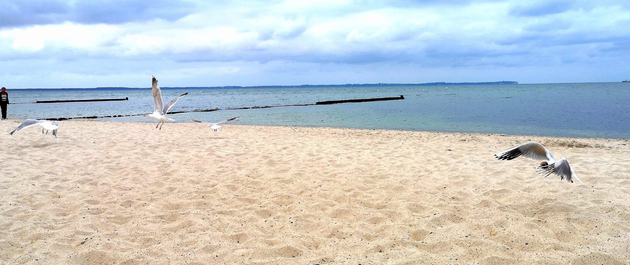 SELLIN - naheliegender Ostseestrand
