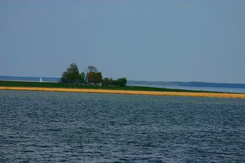 Vogelwartinsel an der Müritz