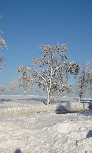 winterliche Impressionen