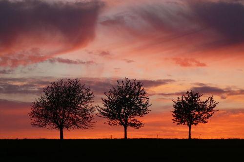 Sonnenuntergang bei Dankerode