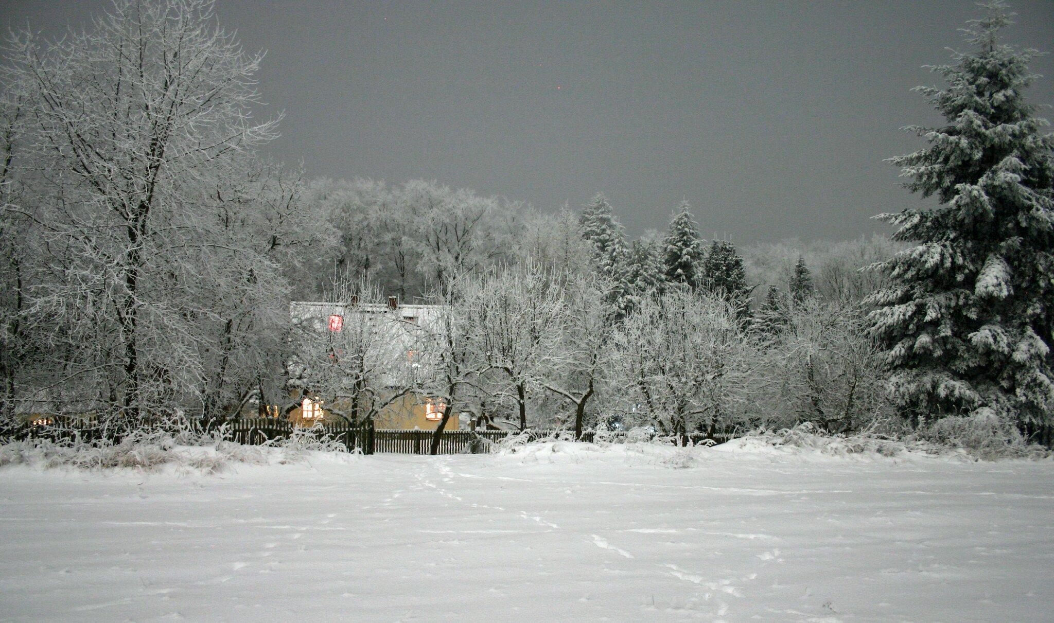 auch Winterdunkel kann schön sein