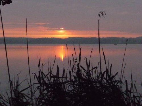 Sonnenaufgang über den Ufer von Bosau