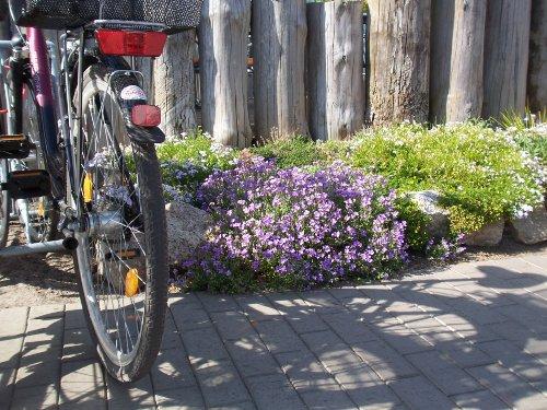 Entspannung durch eine Radtour
