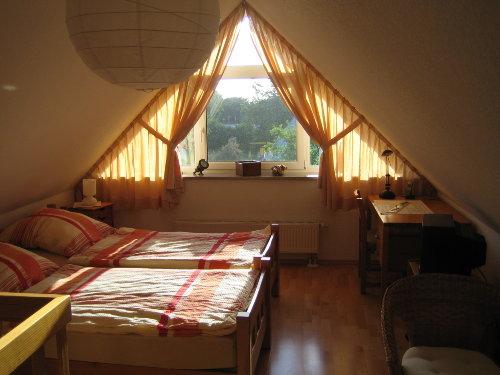 offenes studio mit 2 Betten a 100/200 cm