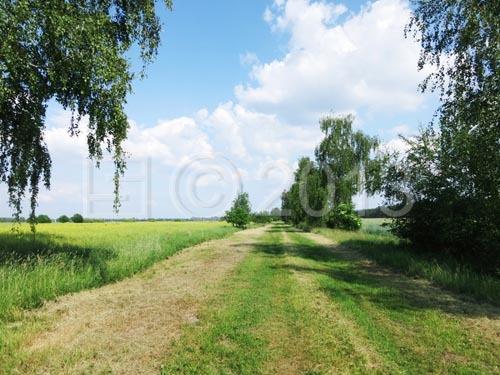 Landschaft bei Lomitz - Erholung pur!