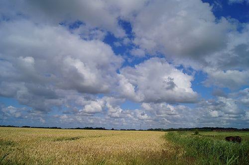 Himmel über Ostfriesland