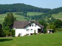 Ferienwohnung Finke - Wohnung Wiesengrund in Frankenau-Altenlotheim - kleines Detailbild