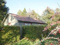 Süd 'Spitze' Ferienhaus - Sölvgranvej in Marielyst - kleines Detailbild