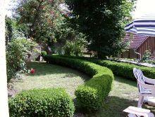 Garten vom Haus aus