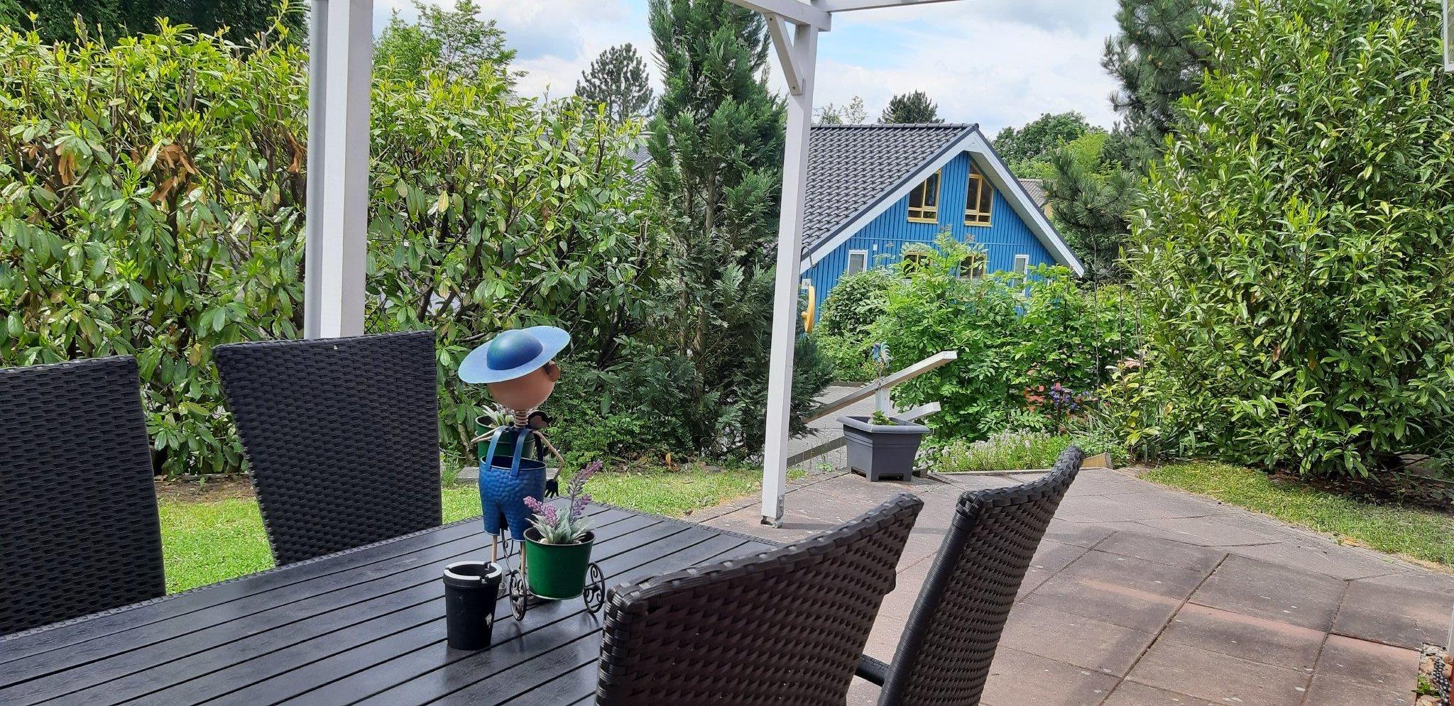 - Kaminofen / Zugang zur Terrasse -