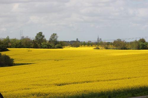 Ausblick mit Stralsund im Hintergrund