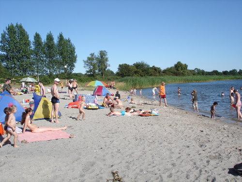 Strand von Gustow 1,5 km südl. vom Haus