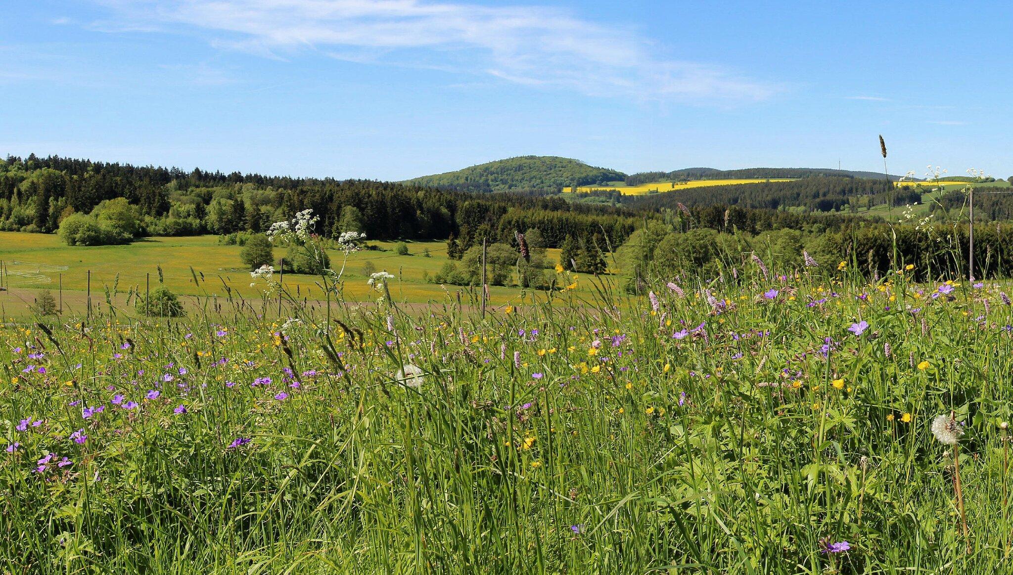 Umgebung Carlsgrün