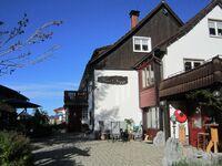 Haus Biggi  - Ferienwohnung Pfänder in Weiler-Simmerberg - kleines Detailbild