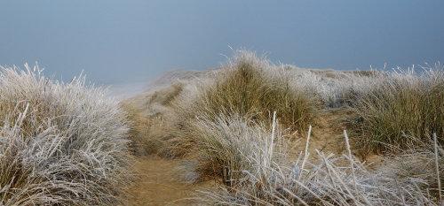 Die Dünen im Winter
