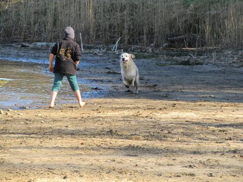 Ein Paradies auch für Hunde