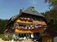 Haldenh�usle - Ferienwohnung Feldberg in Titisee-Neustadt - kleines Detailbild