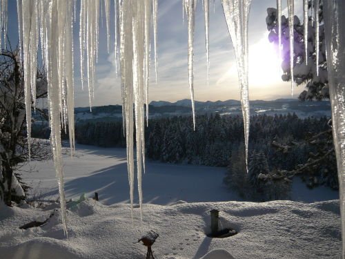 Winter am Landhaus Schmidt