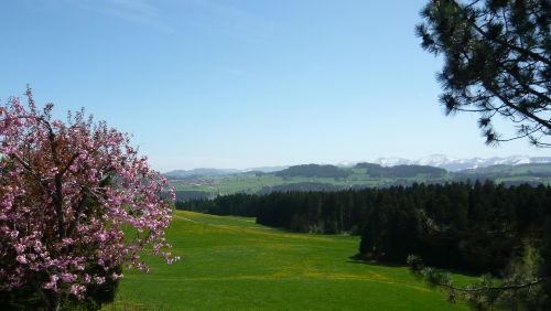 Frühling am Landhaus Schmidt