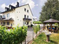 Ferienweingut Scholtes-Hammes in Trittenheim - kleines Detailbild