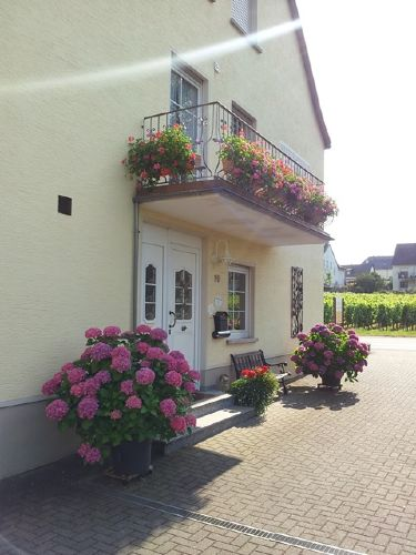 Balkon des Weingutes mit Moseblick