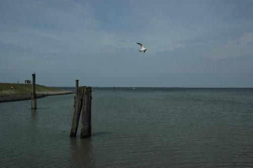 Der Nationalpark Wattenmeer