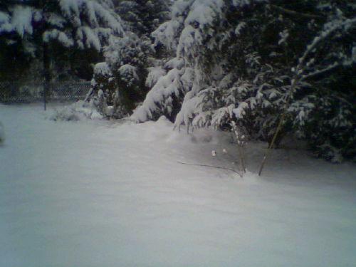 Liegeplatz im Winter