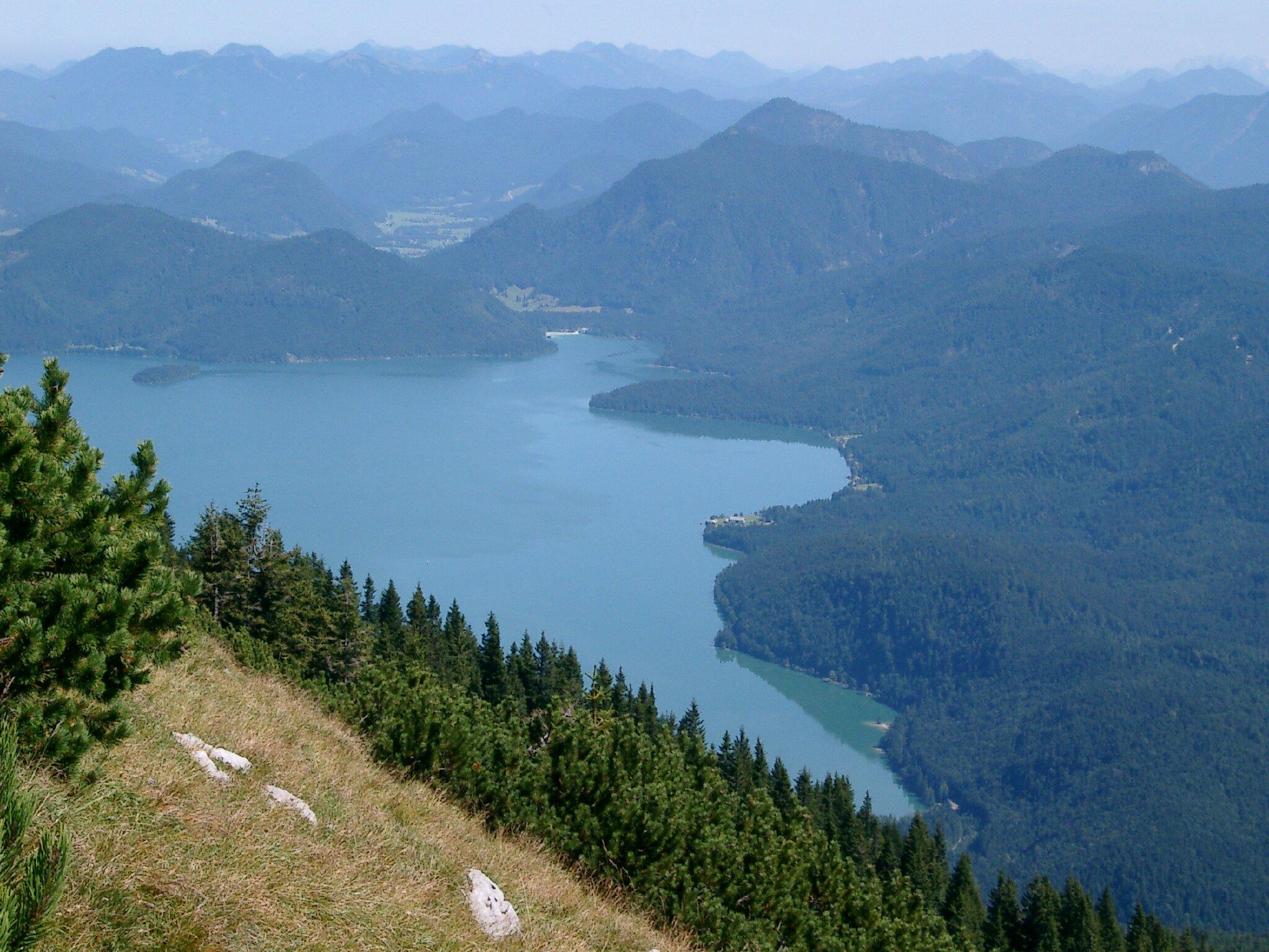 """Wanderung zum """"Walchenseeblick"""""""