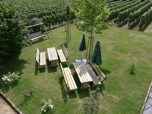 Garten, teilweise umrahmt von Weinbergen