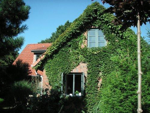 """Feriendomizil """"Green-Garden-Cottage"""""""