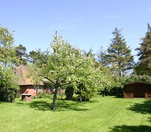 ...großer Garten mit Gartenhaus