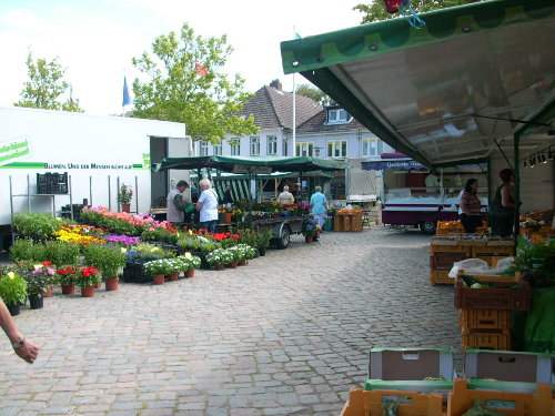 Wochenmarkt in Neustadt Di+Fr