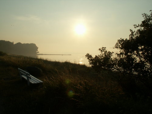 Bank in der Morgensonne 150m vom Haus