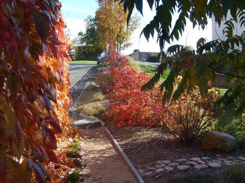 Der Herbst mit seinen Reizen