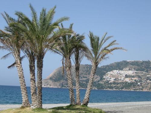 Strand von La Herradura