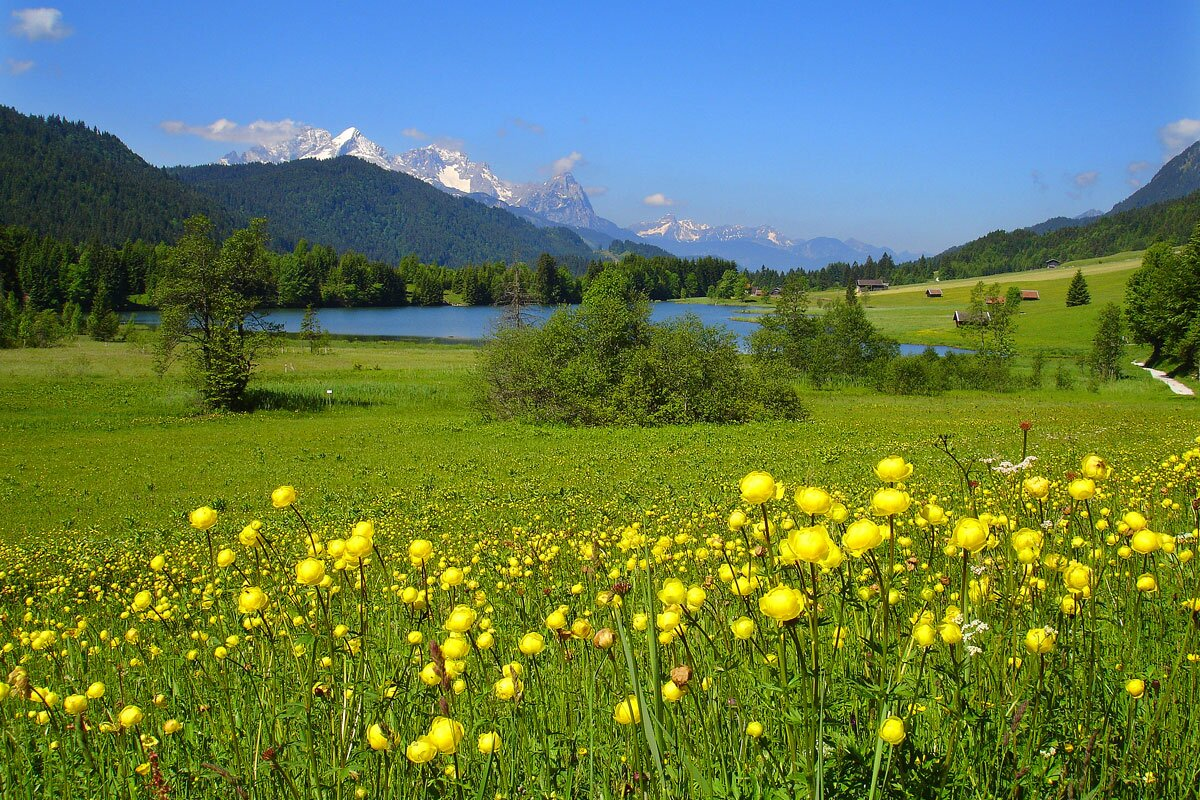 Zusatzbild Nr. 07 von Haus Alpenflora - Ferienwohnung 7