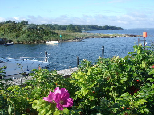 Sonnenuntergang über Schausende