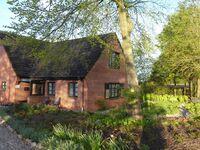 Haus Pausch in Ladelund - kleines Detailbild