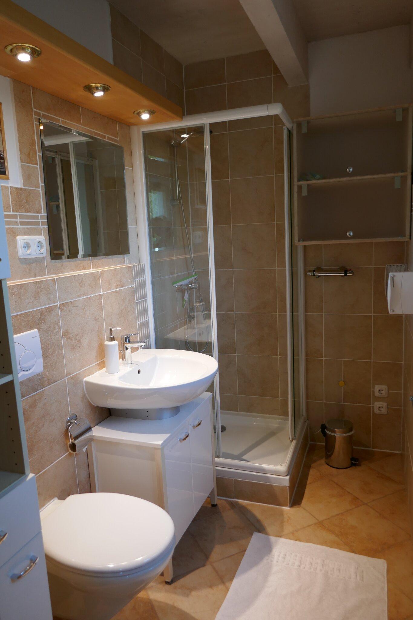 Südwestseite mit Wein- und Kiwipflanzen